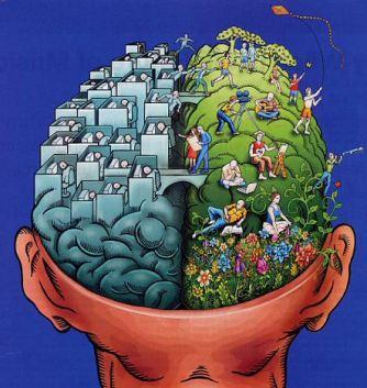 cervello-destro-e-sinistro