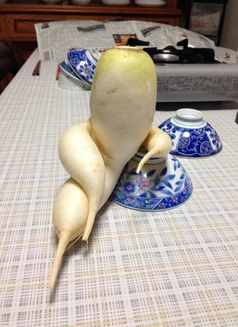 Funny-Shaped-Fruits-Vegetables-10-570x784