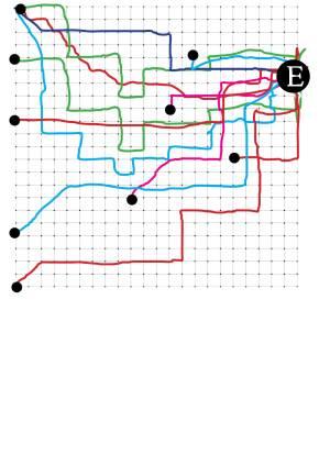 טבלה.jpg